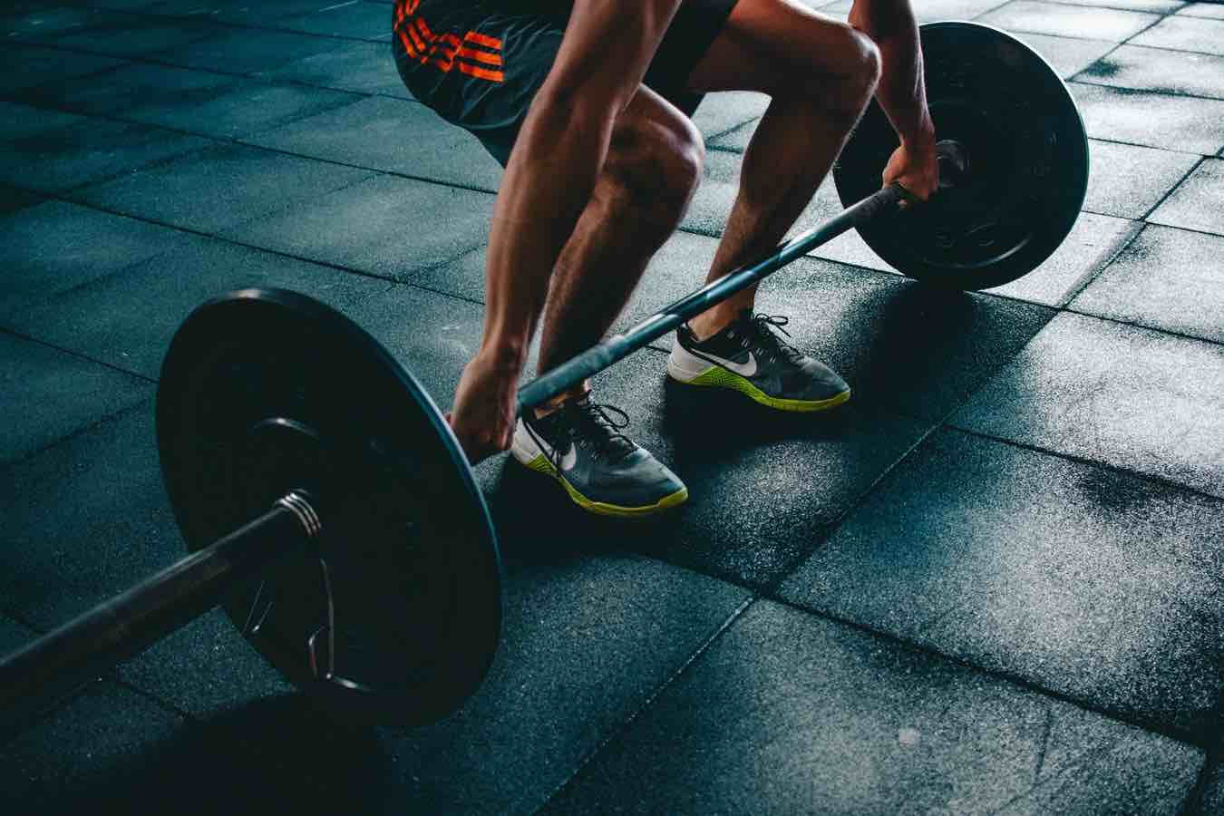 Gym shorts for men