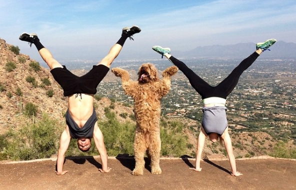 Discover the Benefits of Working out with Your Dog: Your Best Workout Buddy