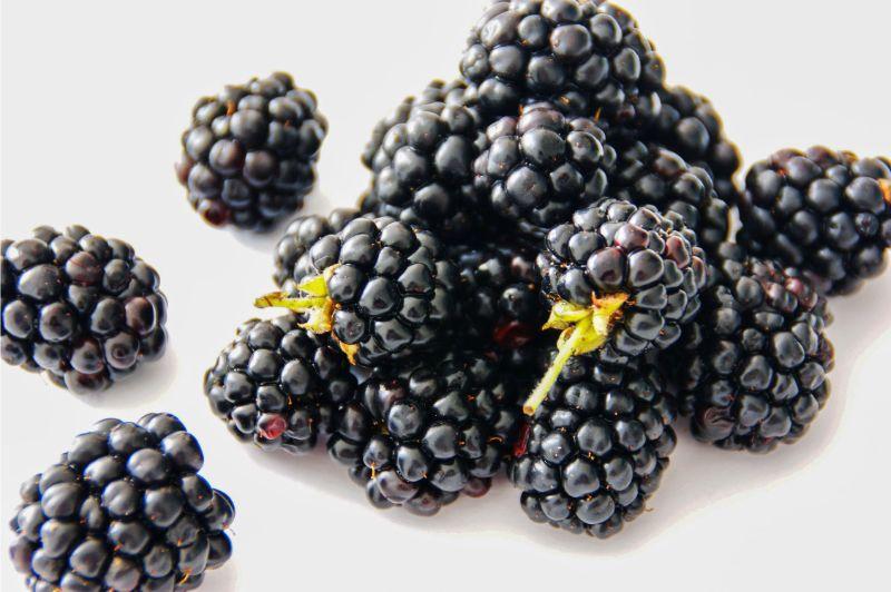 9-surprising-superfoods-9-blackberries