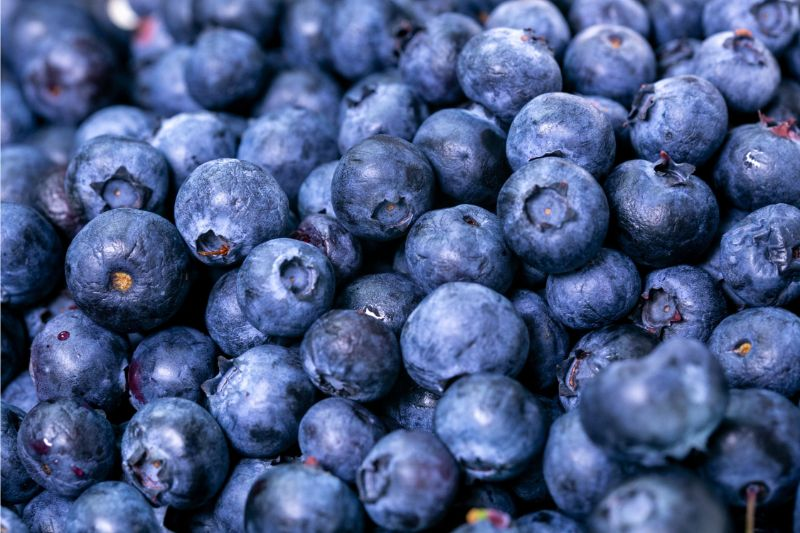 foods-to-combat-the-signs-of-ageing-3-blueberries