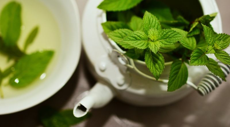 foods-that-kill-the-mood-for-sensuality-7-peppermint
